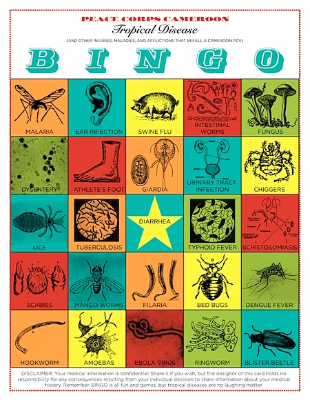 Peace Corps Cameroon Tropical Disease Bingo!